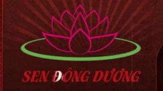 Thiết kế web Sen Đông Dương